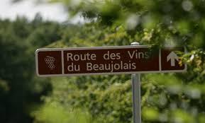 Beaujolais, vinsmagning, middag